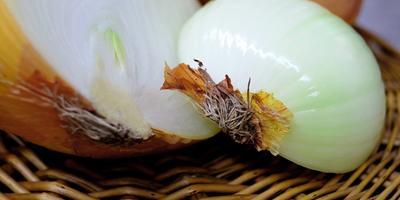 Помогите выбрать сорт лука