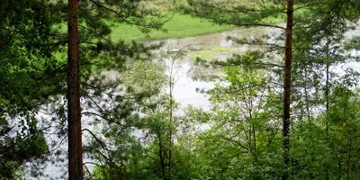Окрестности дальние и ближние алтайского села