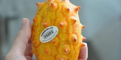Экзотический фрукт - дыня Кивано