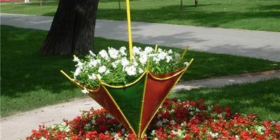 Самые необычные идеи для садовых клумб