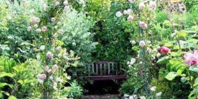 Красивые и функциональные садовые арки.