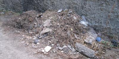 Очищаем двор от мусора