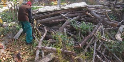 Пилим дрова болгаркой