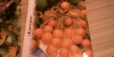 Гибридус - Гигантус!!!   :-))))