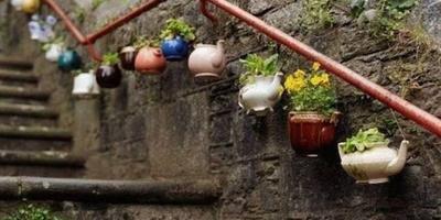 Кашпо для цветов из старых чайников