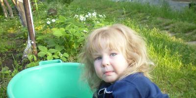 Во саду ли в огороде!