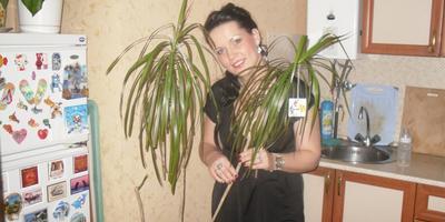 """""""Своё место под солнцем в нашем доме нашла красавица-пальма!"""""""