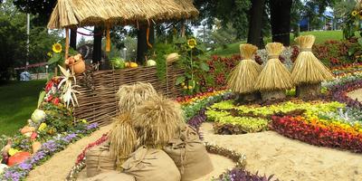 Цветочные выставки в Киеве