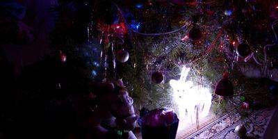 Говорят, под Новый год... или сказочный олень