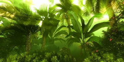 550 гектаров леса вырастил житель Индии за 30 лет