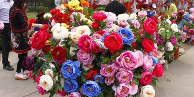 10 апреля начнется недельный фестиваль пионов в Китае