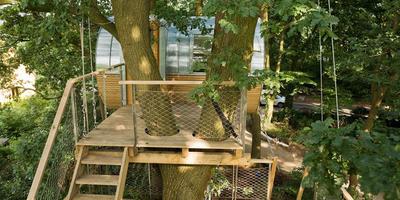 Необычная закрытая беседка на дереве в Германии