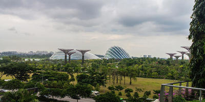 Сингапурский чудо-парк Gardens By The Bay