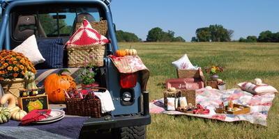 Две идеи для осеннего пикника на природе