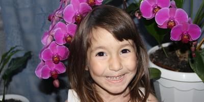 Мои орхидеюшки!