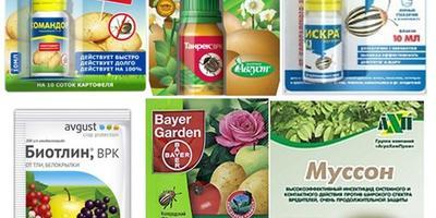 Химические препараты для борьбы с насекомыми-вредителями