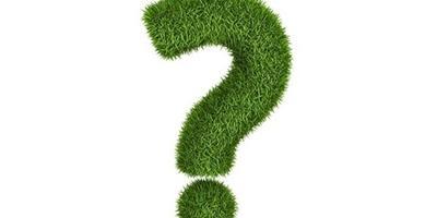 Что посадить в приствольных кругах барбариса и кустовой вишни?