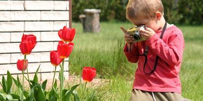 Поздравляем победителей VI этапа конкурса дачных фотографий