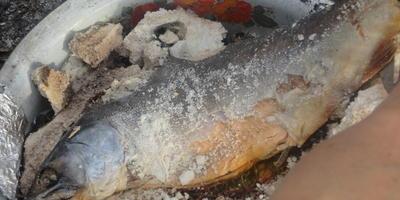 Рыба в шубке из соли