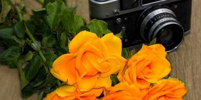 Поздравляем победителей XI этапа конкурса дачных фотографий