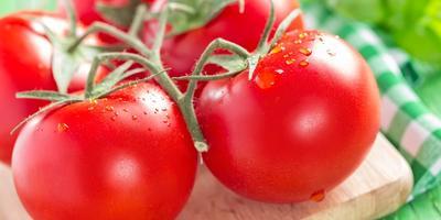 7 маленьких секретов выращивания вкусных помидоров