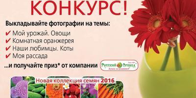 """В нашей группе в ВКонтакте стартует конкурс """"Счастливый фотоальбом"""""""
