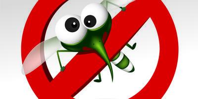 SOS! Поделитесь, чем вы защищаетесь от комаров?