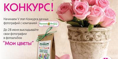 Конкурс фотографий в нашей группе ВКонтакте - подключайтесь!