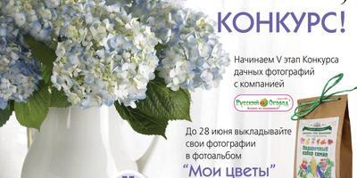 Заканчивается Конкурс дачных фотографий в нашей группе ВКонтакте! Спешите! До 24.00 еще есть время!