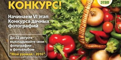 Конкурс фотографий в нашей группе ВКонтакте - присоединяйтесь!