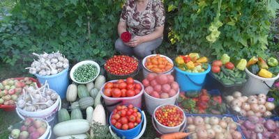 Готовим каталог любимых сортов овощей, ягод, фруктов и цветов. Подключаемся все!
