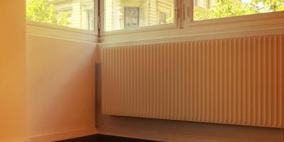 Какие комнатные растения можно поселить на зиму у батареи центрального отопления?