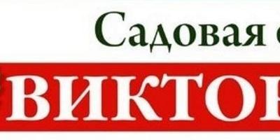 """Отзывы об интернет-магазине """"Виктория"""""""