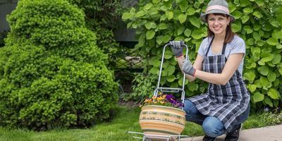 """Представляем фотоконкурс """"Мой прекрасный сад""""! Прием работ - с 20 июля!"""