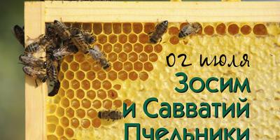2 июля смотрим на пчел - они сегодня главные герои дня