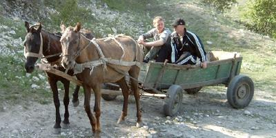 А в деревне лошади...