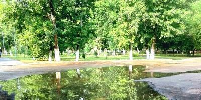 """Фотомарафон """"1 сентября - первый день Осени"""""""