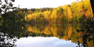 На 7 дач - выходные с Осенью