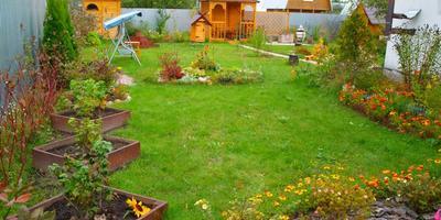 Ягодно-овощной уголок в моём саду