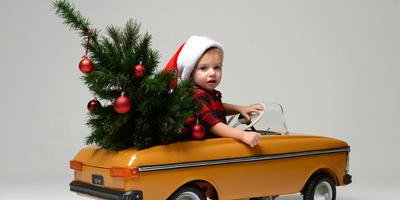 На 7 дач - выходные с новогодними ёлочками!