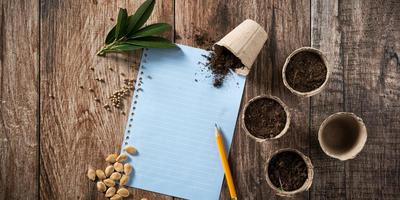 Как правильно приготовить грунт для рассады? Опыт и советы семидачников
