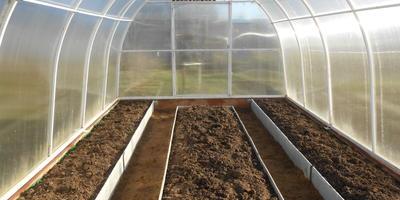 Теплица - для растений дом, должно быть им уютно в нём
