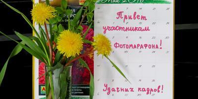 """Поздравляем победителей фотомарафона """"Планета одуванчиков""""!"""