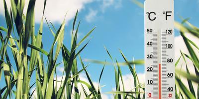 Гидрометцентр 7 дач спрашивает - чем порадовал вас конец июня?