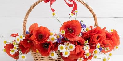 """Поздравляем победителей конкурса """"Секреты дачной теплицы""""!"""