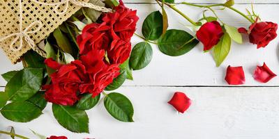 """Поздравляем победителей фотомарафона """"Seedspost.ru на моей даче и в моем доме""""!"""
