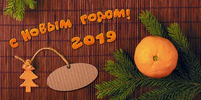 С Новым годом, дорогие семидачники!!! И пусть он будет счастливым для всех!!!