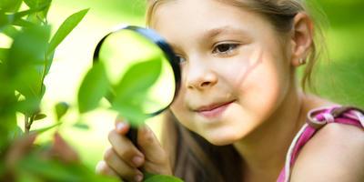 Что такое регуляторы роста и нужны ли они растениям