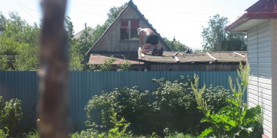 Посоветуйте, что посадить в угол огорода около бани, чтобы закрыло забор и крышу соседского сарая?