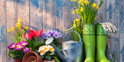 План на весну